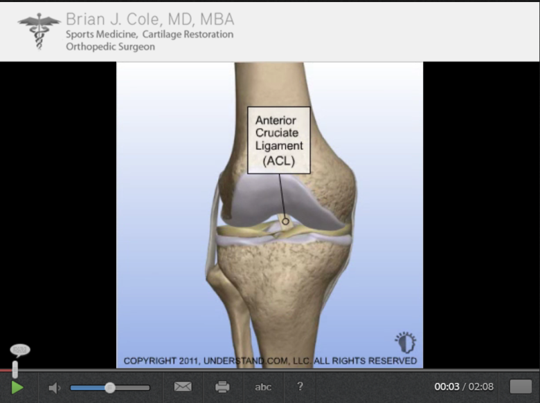 3D Animation on Torn ACL Procedures